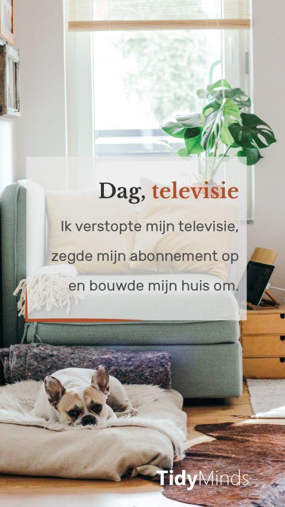Minimaliseren televisie voor rust en ruimte Tidy Minds