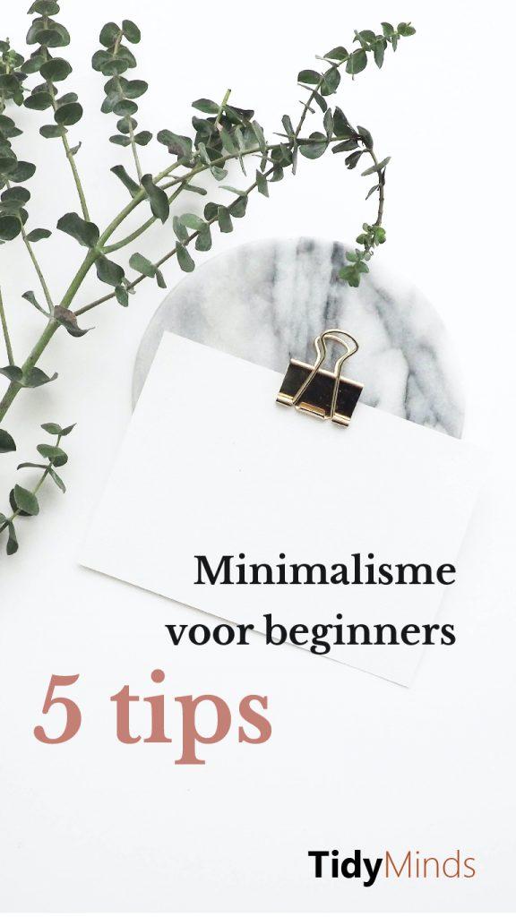 Fouten bij ontspullen Tips voor minimalisme voor beginners Marie Kondo Tidy Minds (1)