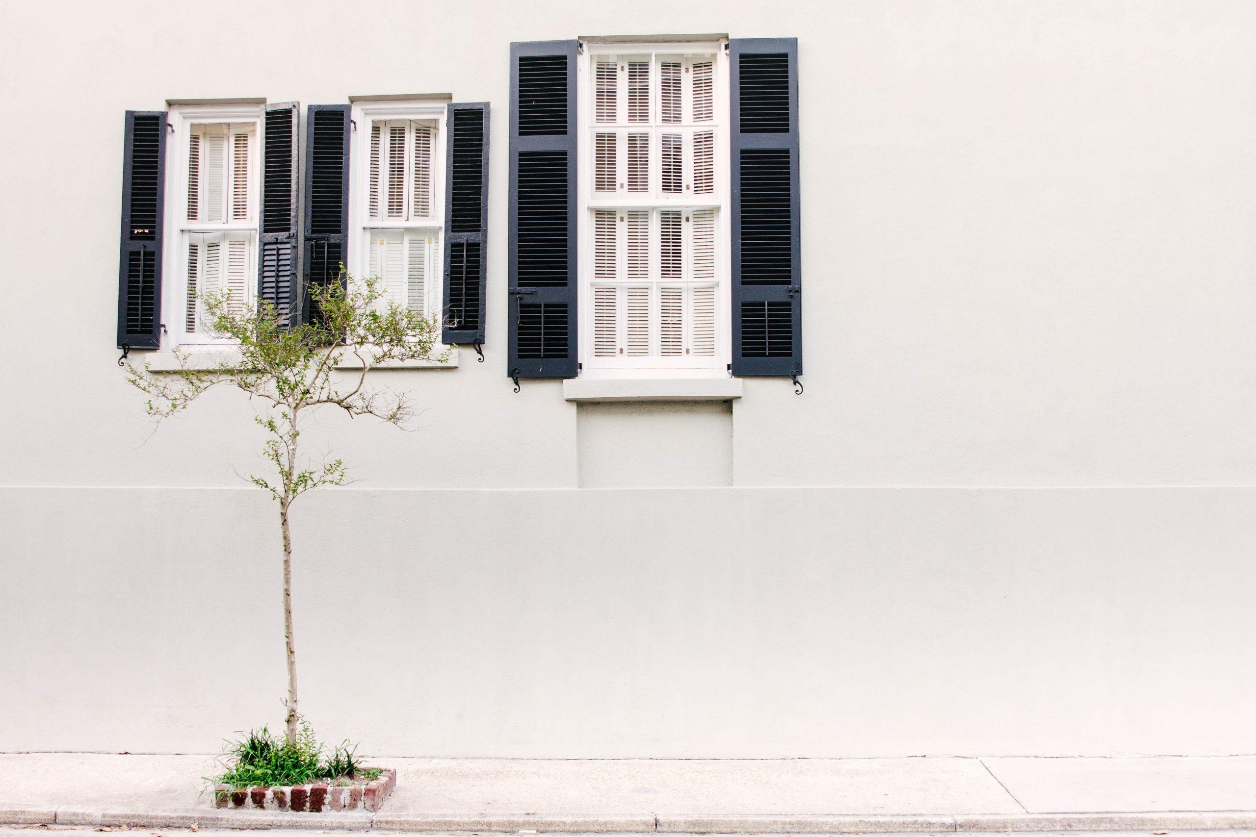 Tidy Minds bewust leven minimalisme duurzaamheid financieel onafhankelijk passief inkomen ontspullen