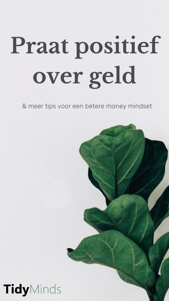 Positieve money mindset voor jouw droomleven | Tidy Minds over geldzaken mindset en passief inkomen