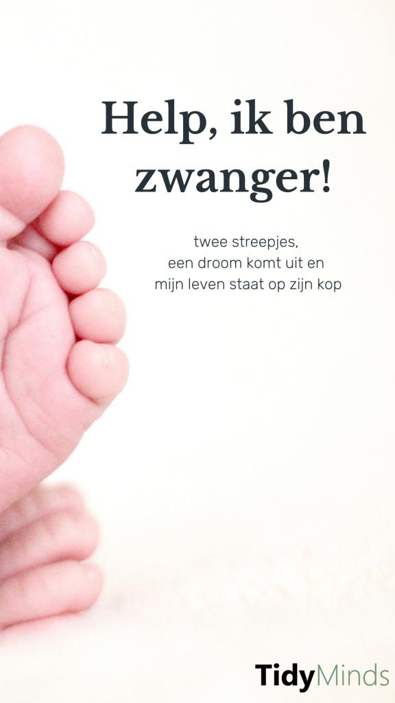 Help ik ben zwanger | Moeders en minimalisme | Minimale babyuitzet | Tidy Minds
